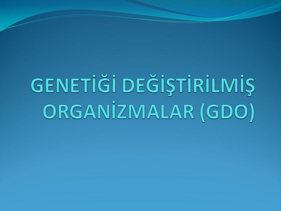 GENETİĞİ DEĞİŞTİRİLMİŞ ORGANİZMALAR (GDO)