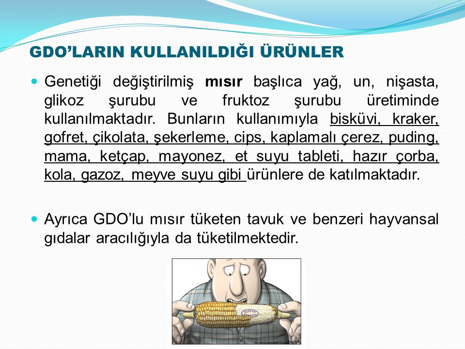 GDO'LARIN KULLANILDIĞI ÜRÜNLER