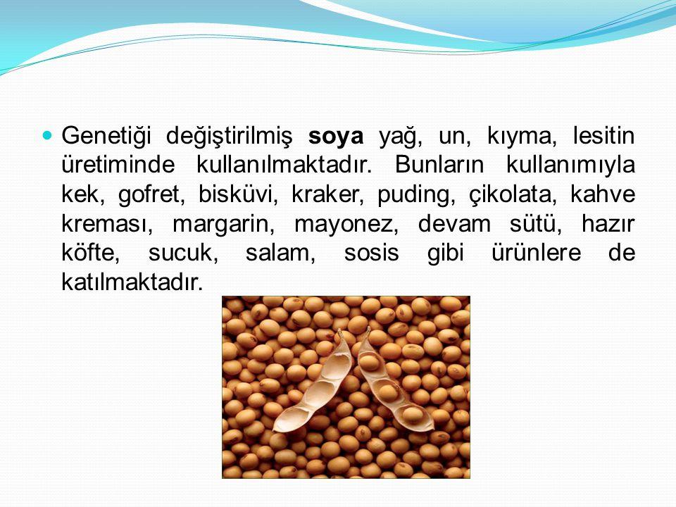 Genetiği değiştirilmiş soya yağ, un, kıyma, lesitin üretiminde kullanılmaktadır.