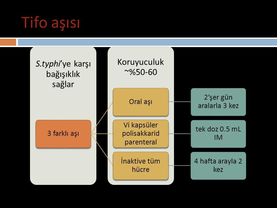 Tifo aşısı S.typhi'ye karşı bağışıklık sağlar Koruyuculuk ~%50-60