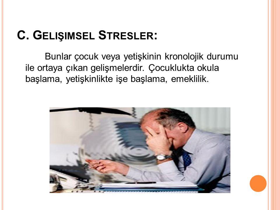 C. Gelişimsel Stresler:
