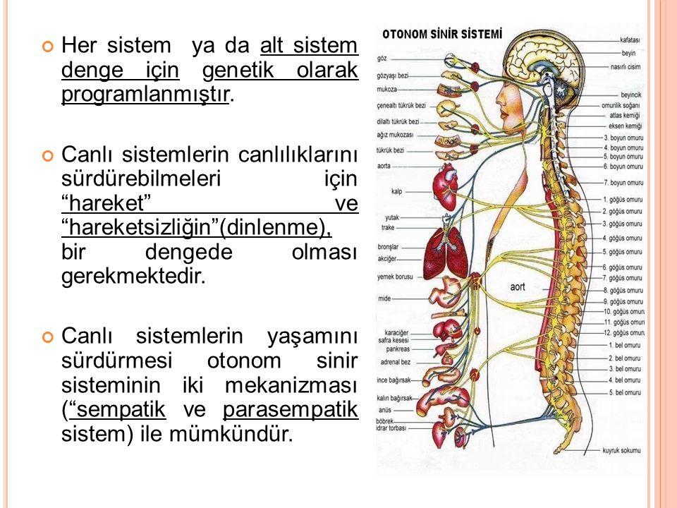 Her sistem ya da alt sistem denge için genetik olarak programlanmıştır.
