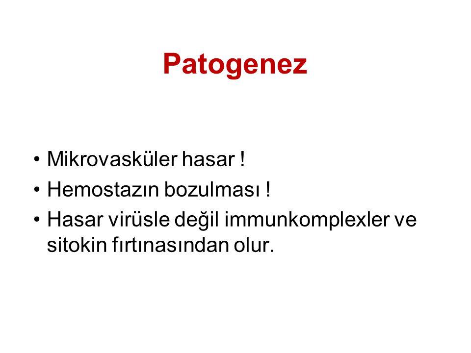 Patogenez Mikrovasküler hasar ! Hemostazın bozulması !