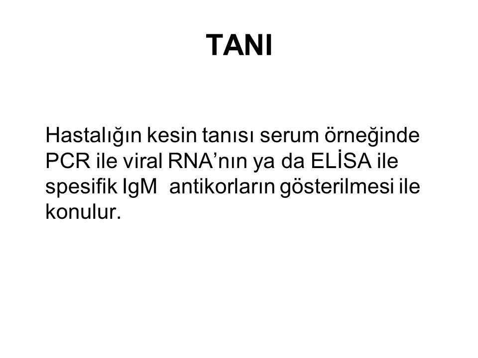 TANI Hastalığın kesin tanısı serum örneğinde PCR ile viral RNA'nın ya da ELİSA ile spesifik IgM antikorların gösterilmesi ile konulur.