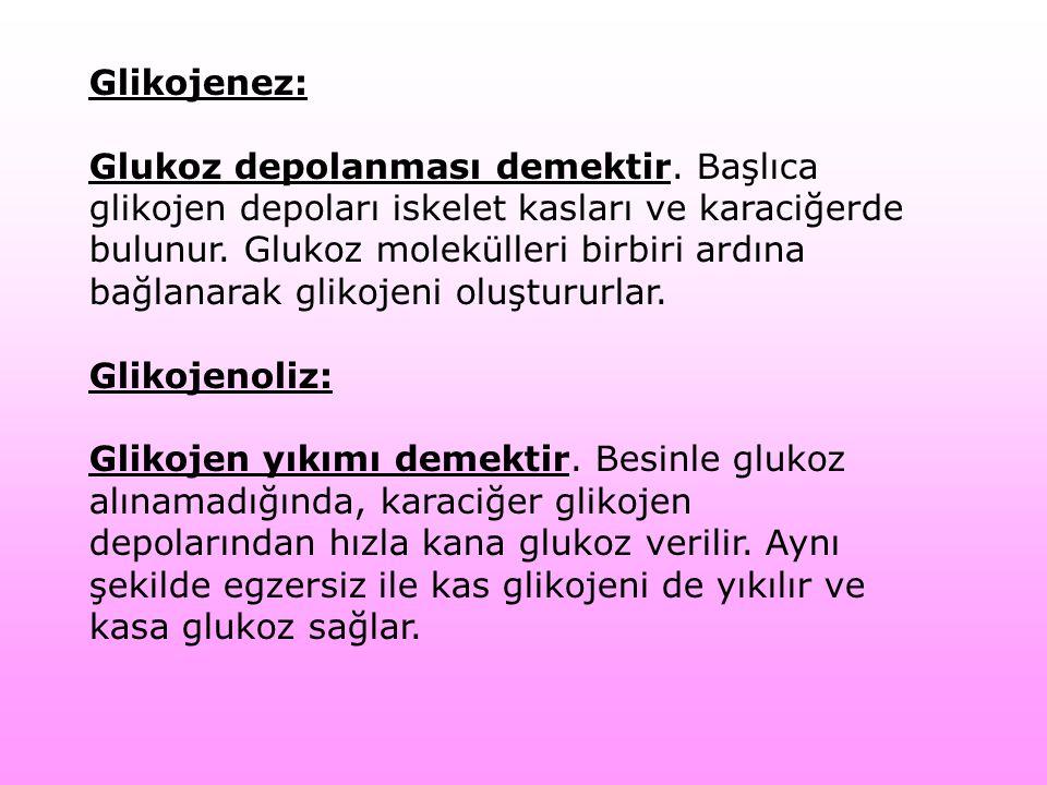 Glikojenez: