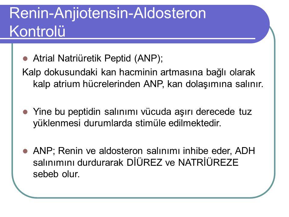 Renin-Anjiotensin-Aldosteron Kontrolü
