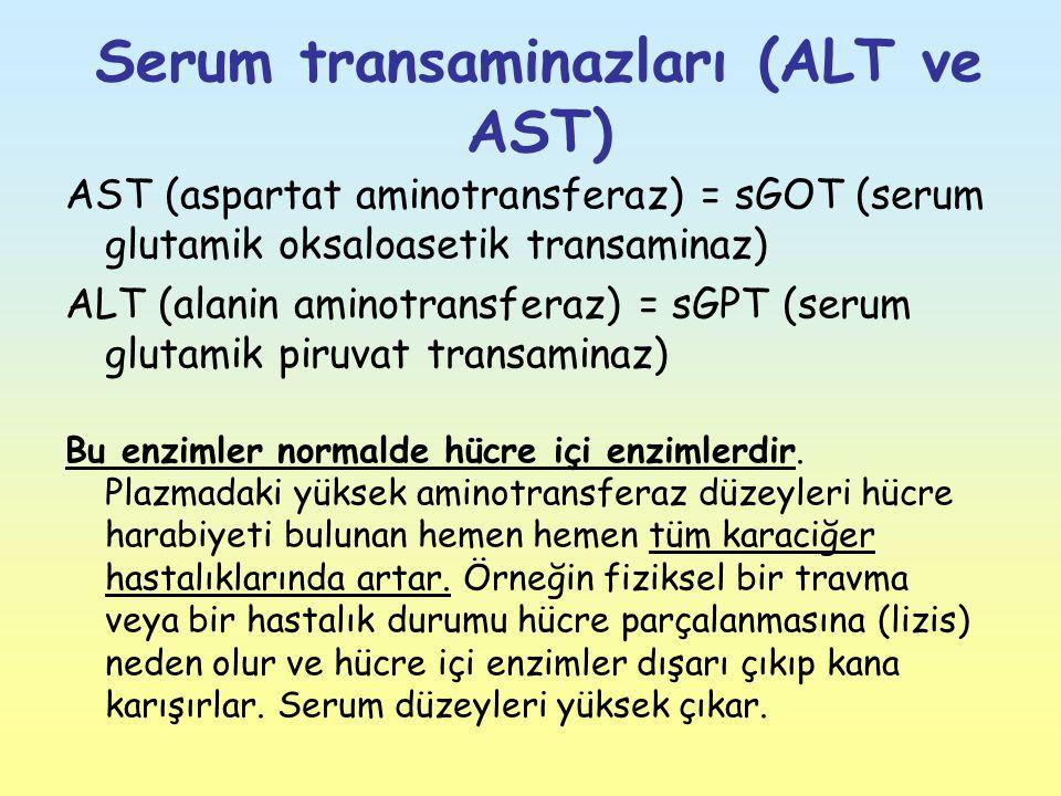 Serum transaminazları (ALT ve AST)