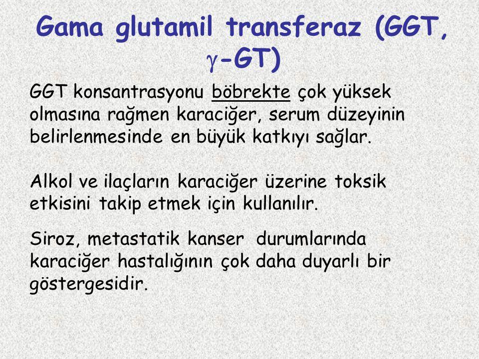 Gama glutamil transferaz (GGT, -GT)