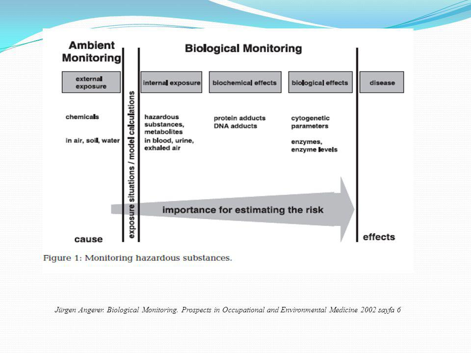 Jürgen Angerer. Biological Monitoring