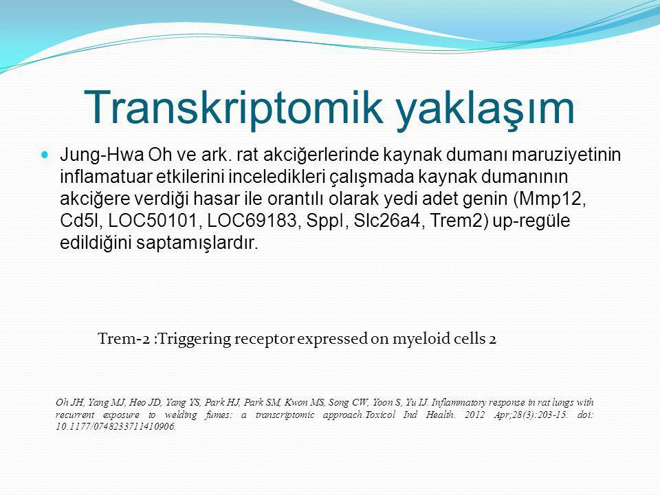 Transkriptomik yaklaşım