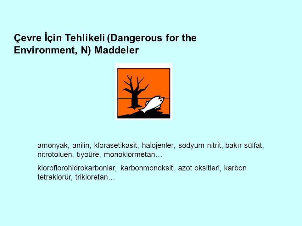 Çevre İçin Tehlikeli (Dangerous for the Environment, N) Maddeler
