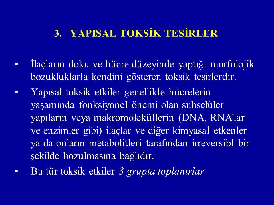 YAPISAL TOKSİK TESİRLER