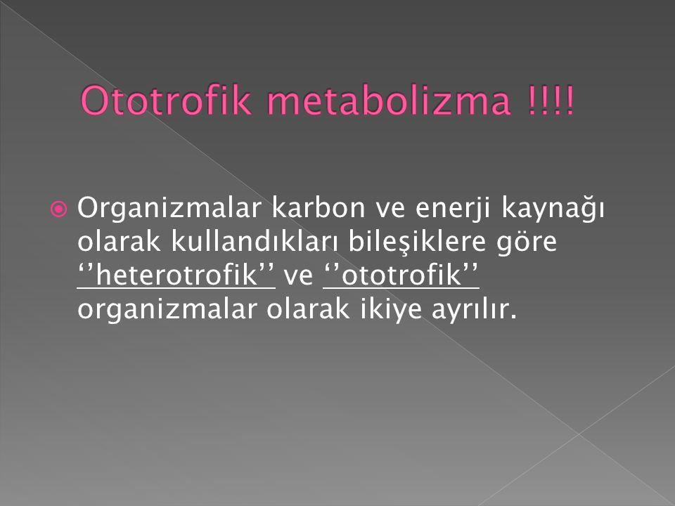 Ototrofik metabolizma !!!!