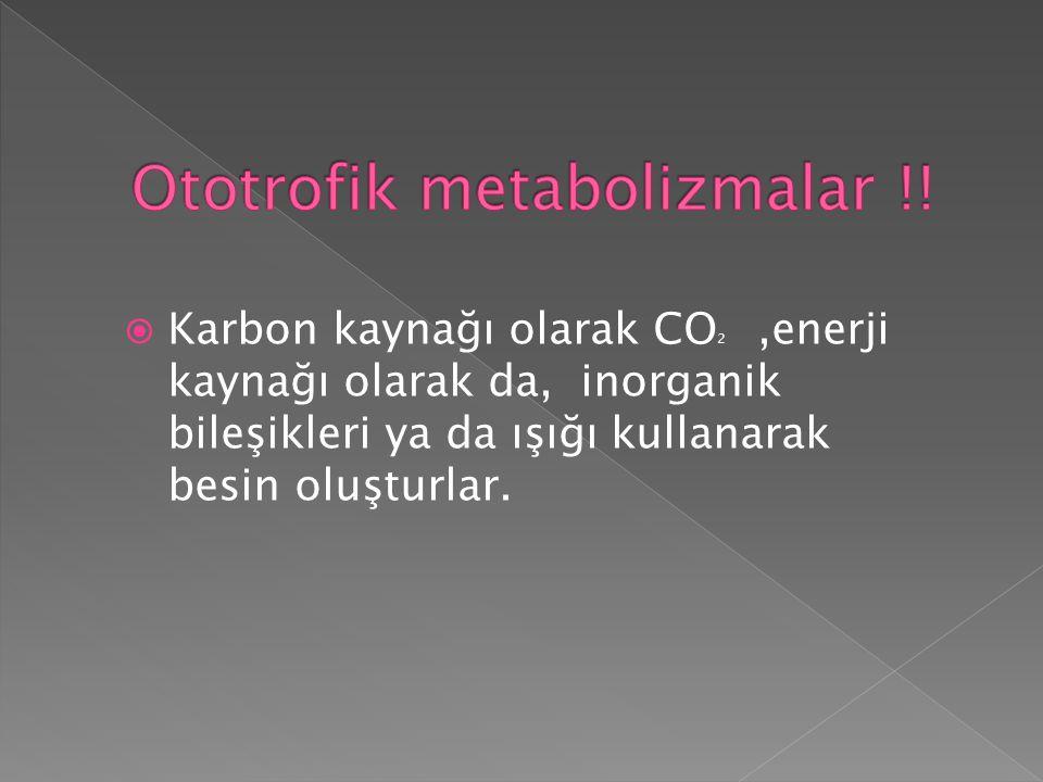 Ototrofik metabolizmalar !!