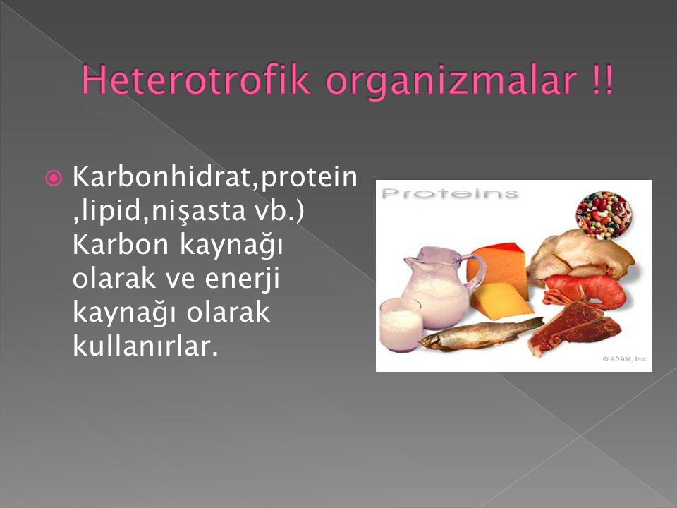 Heterotrofik organizmalar !!