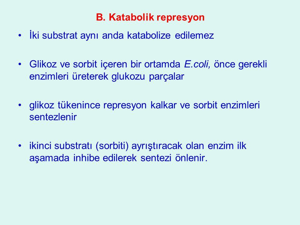B. Katabolik represyon İki substrat aynı anda katabolize edilemez.