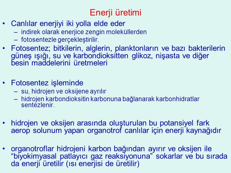 Enerji üretimi Canlılar enerjiyi iki yolla elde eder