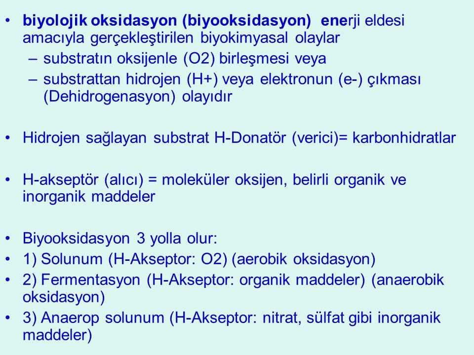 biyolojik oksidasyon (biyooksidasyon) enerji eldesi amacıyla gerçekleştirilen biyokimyasal olaylar