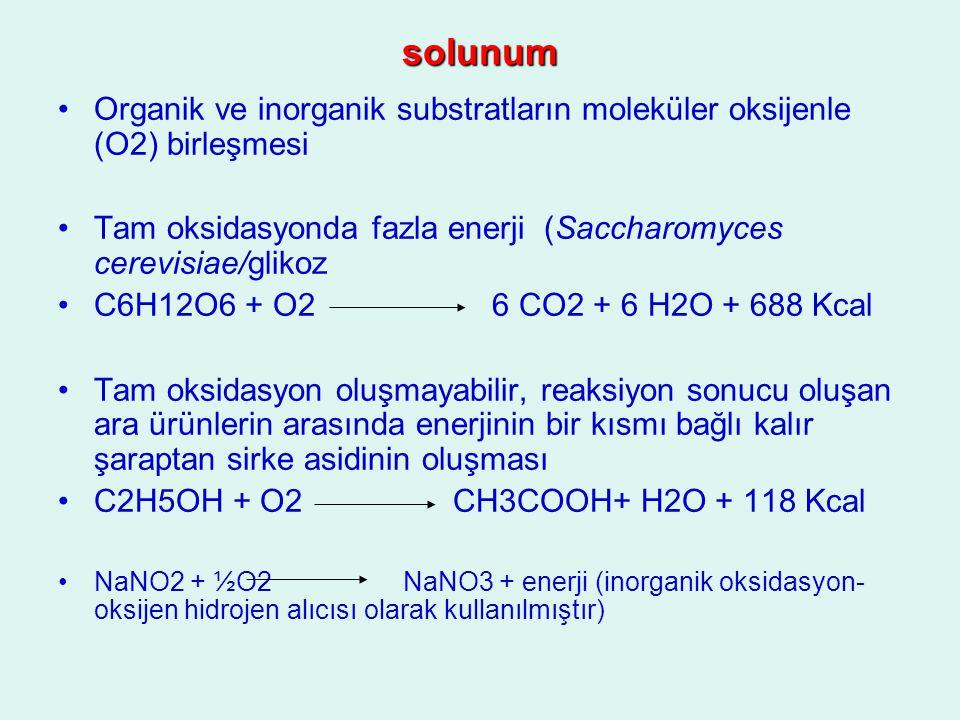 solunum Organik ve inorganik substratların moleküler oksijenle (O2) birleşmesi. Tam oksidasyonda fazla enerji (Saccharomyces cerevisiae/glikoz.