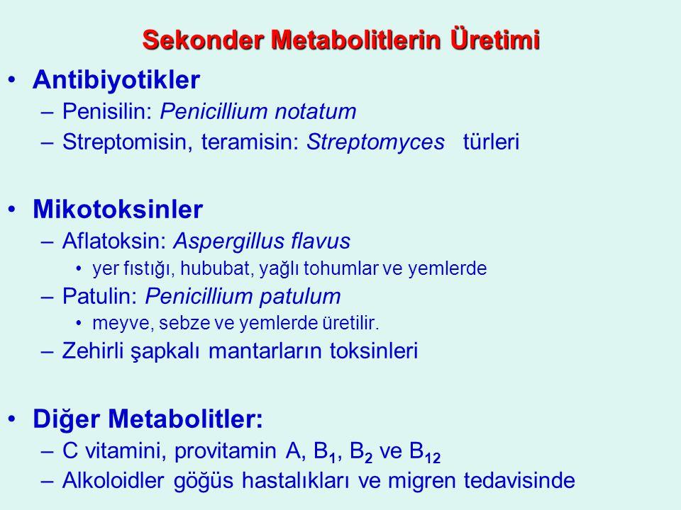 Sekonder Metabolitlerin Üretimi