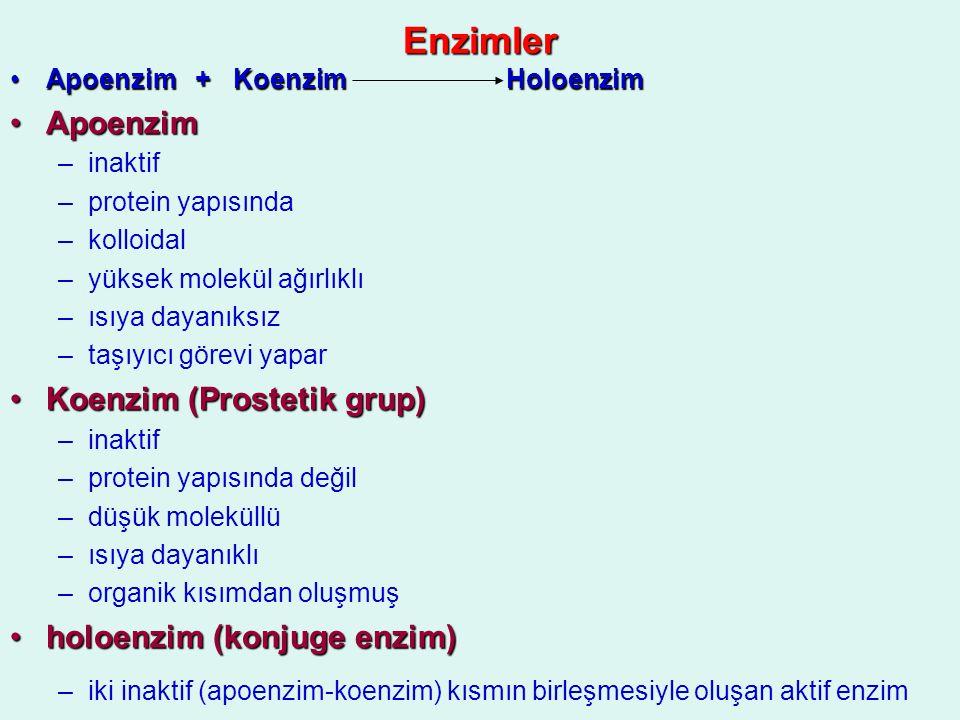 Enzimler Apoenzim Koenzim (Prostetik grup) holoenzim (konjuge enzim)