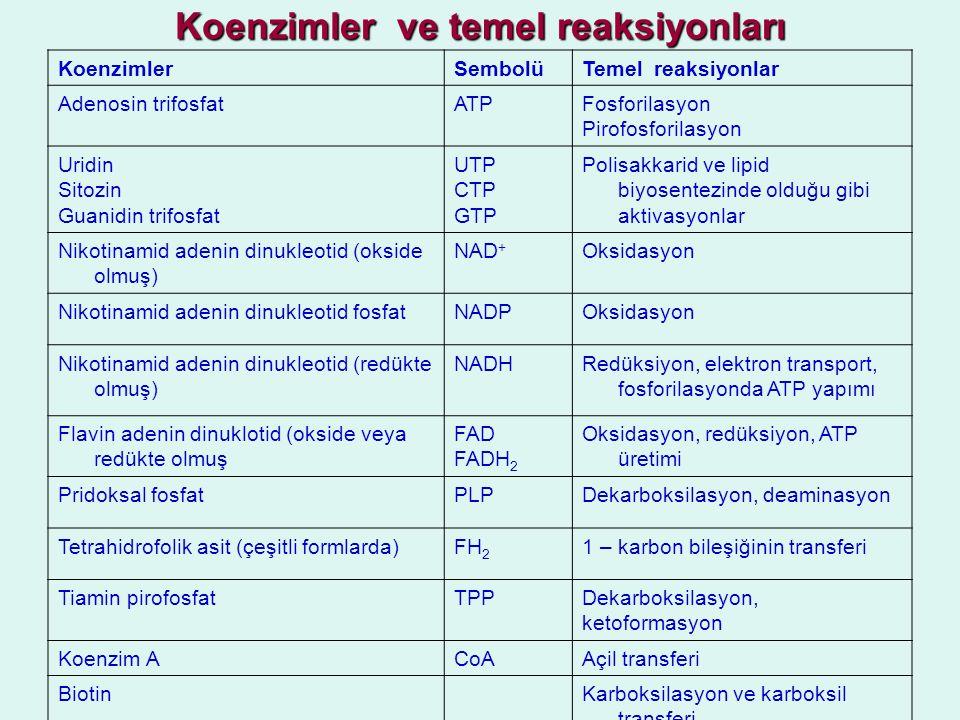 Koenzimler ve temel reaksiyonları