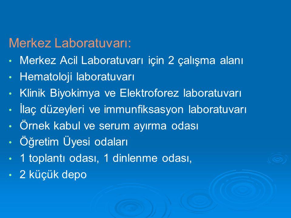 Merkez Laboratuvarı: Merkez Acil Laboratuvarı için 2 çalışma alanı