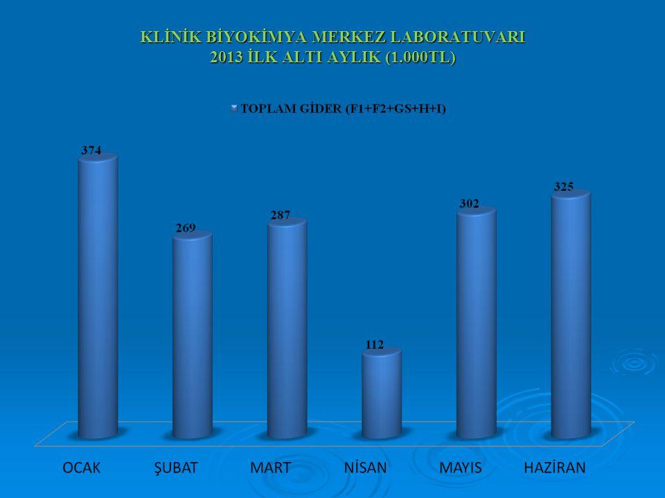 KLİNİK BİYOKİMYA MERKEZ LABORATUVARI 2013 İLK ALTI AYLIK (1.000TL)