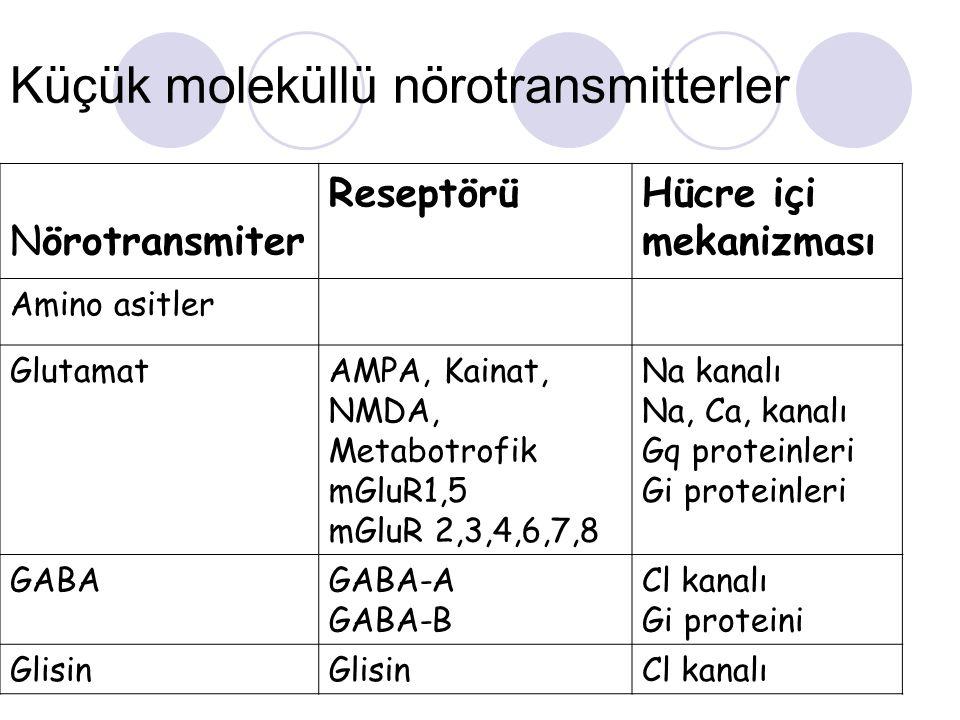 Küçük moleküllü nörotransmitterler