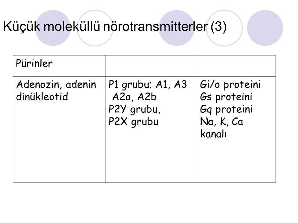 Küçük moleküllü nörotransmitterler (3)