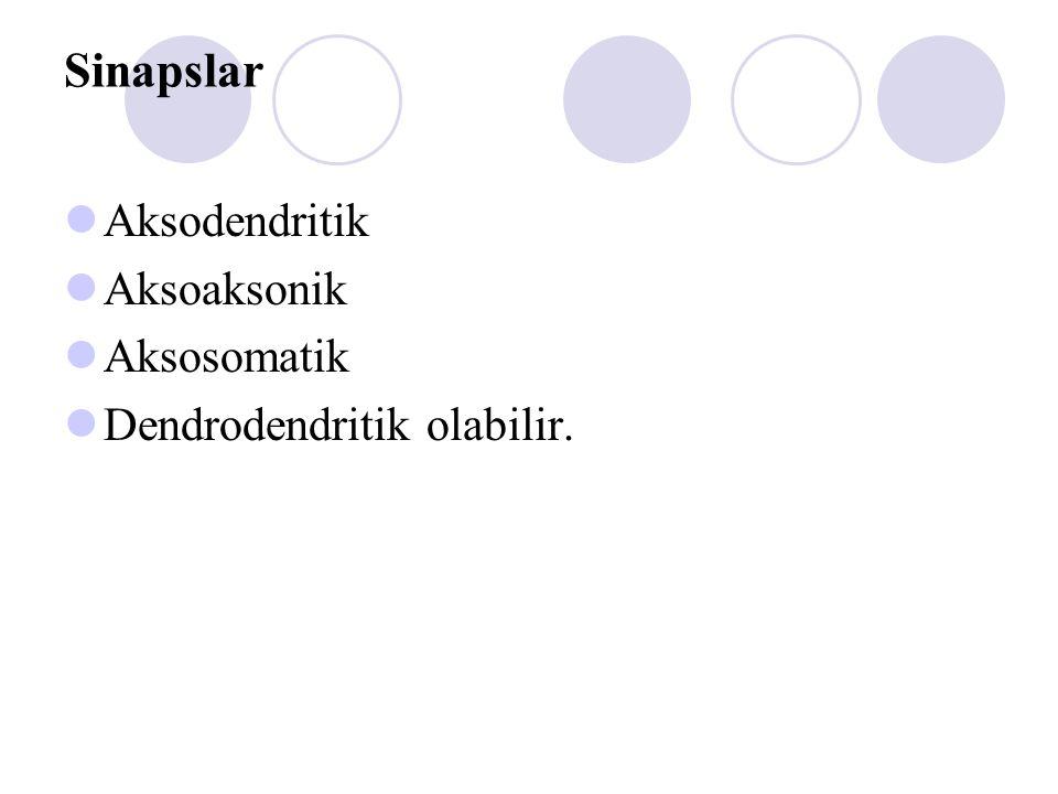 Sinapslar Aksodendritik Aksoaksonik Aksosomatik