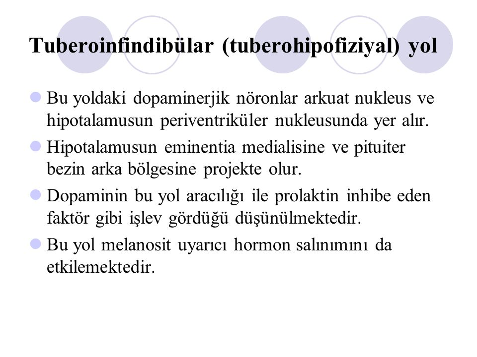 Tuberoinfindibülar (tuberohipofiziyal) yol