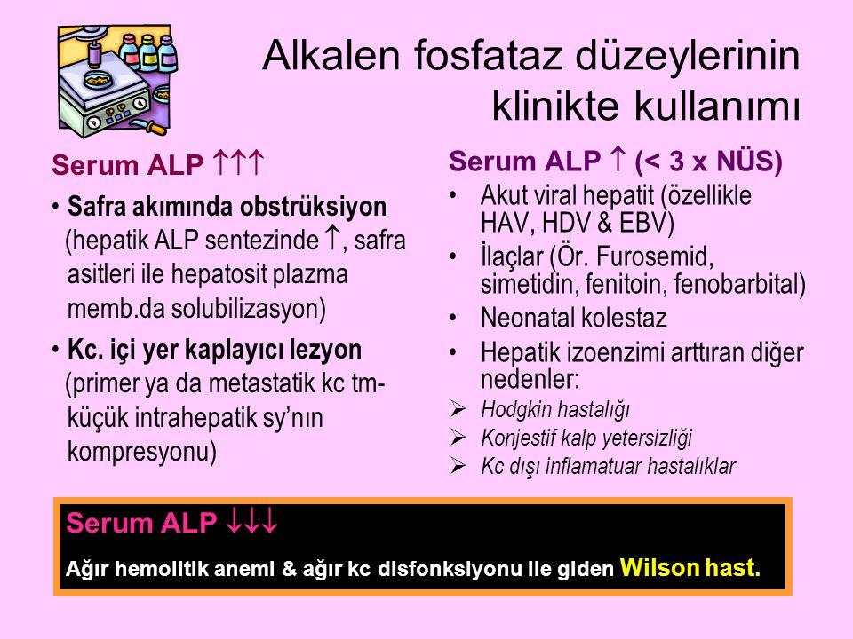 Alkalen fosfataz düzeylerinin klinikte kullanımı