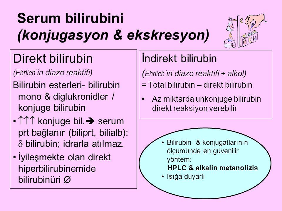 Serum bilirubini (konjugasyon & ekskresyon)
