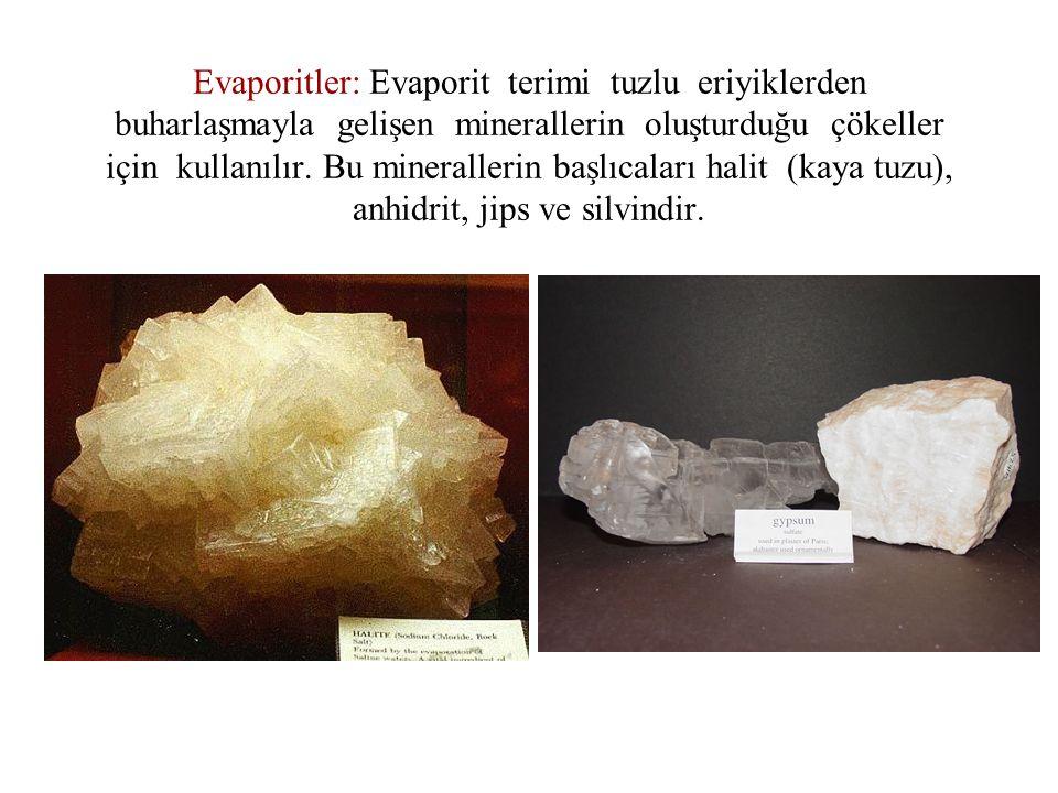 Evaporitler: Evaporit terimi tuzlu eriyiklerden buharlaşmayla gelişen minerallerin oluşturduğu çökeller için kullanılır.