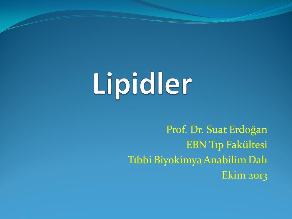 Lipidler Prof. Dr. Suat Erdoğan EBN Tıp Fakültesi