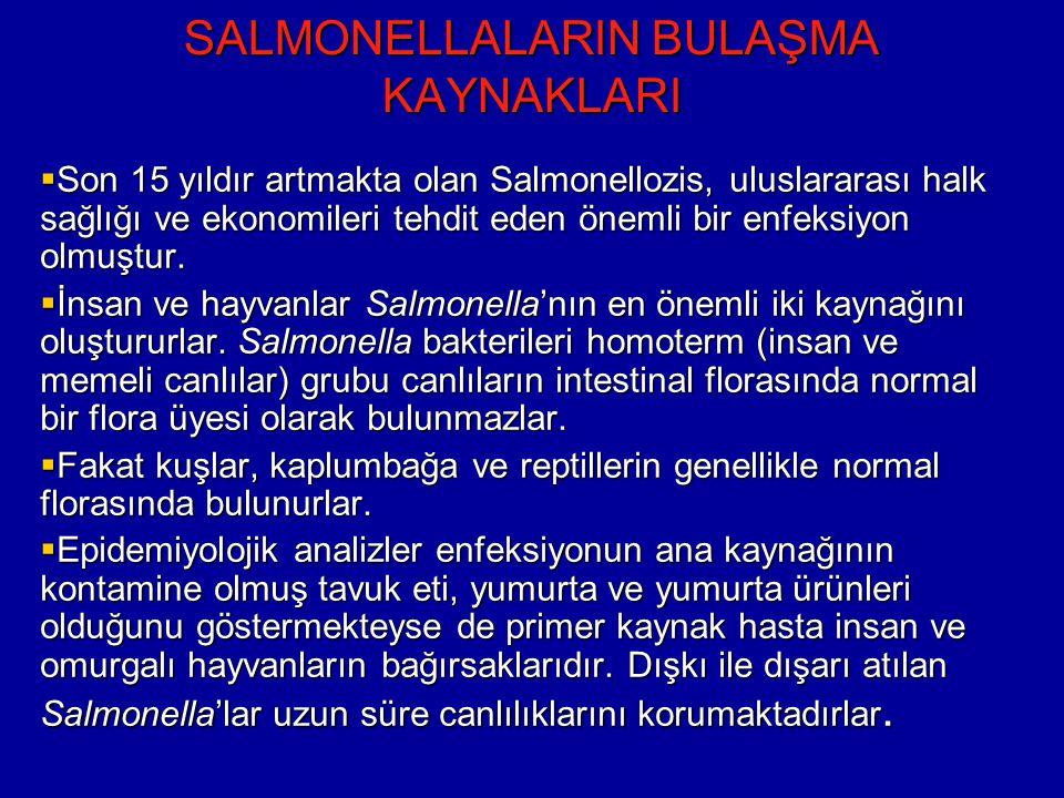 SALMONELLALARIN BULAŞMA KAYNAKLARI