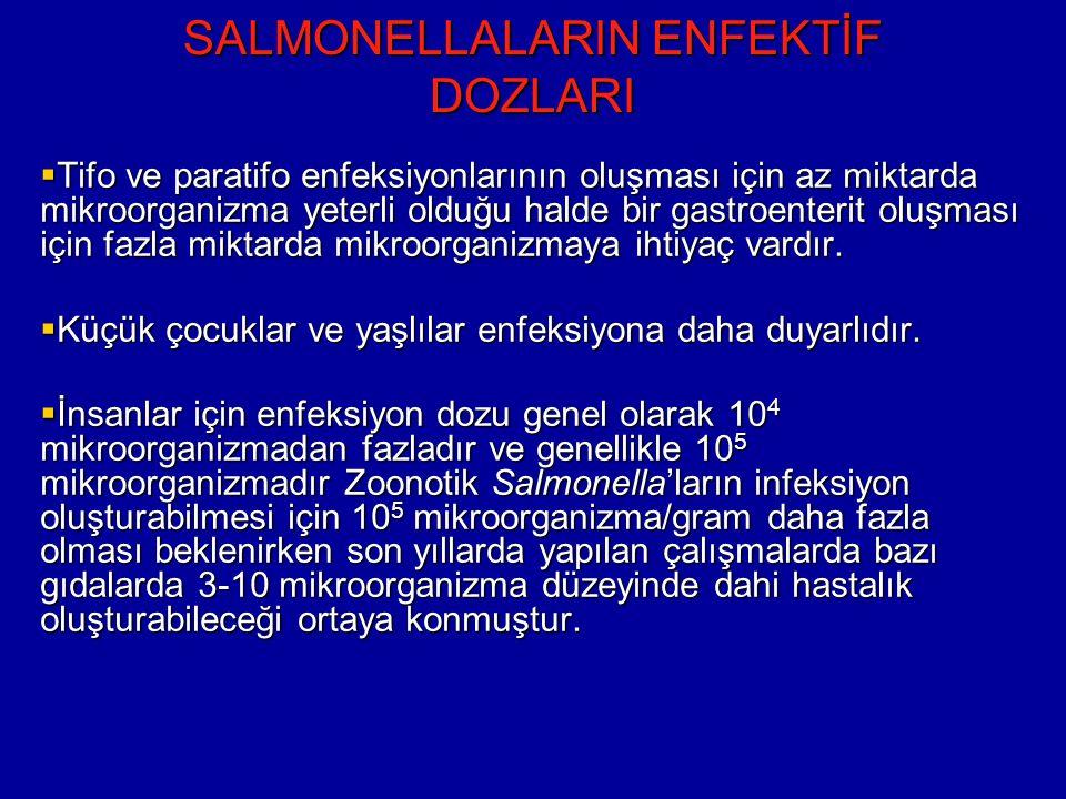 SALMONELLALARIN ENFEKTİF DOZLARI