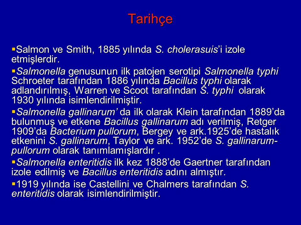 Tarihçe Salmon ve Smith, 1885 yılında S. cholerasuis'i izole etmişlerdir.