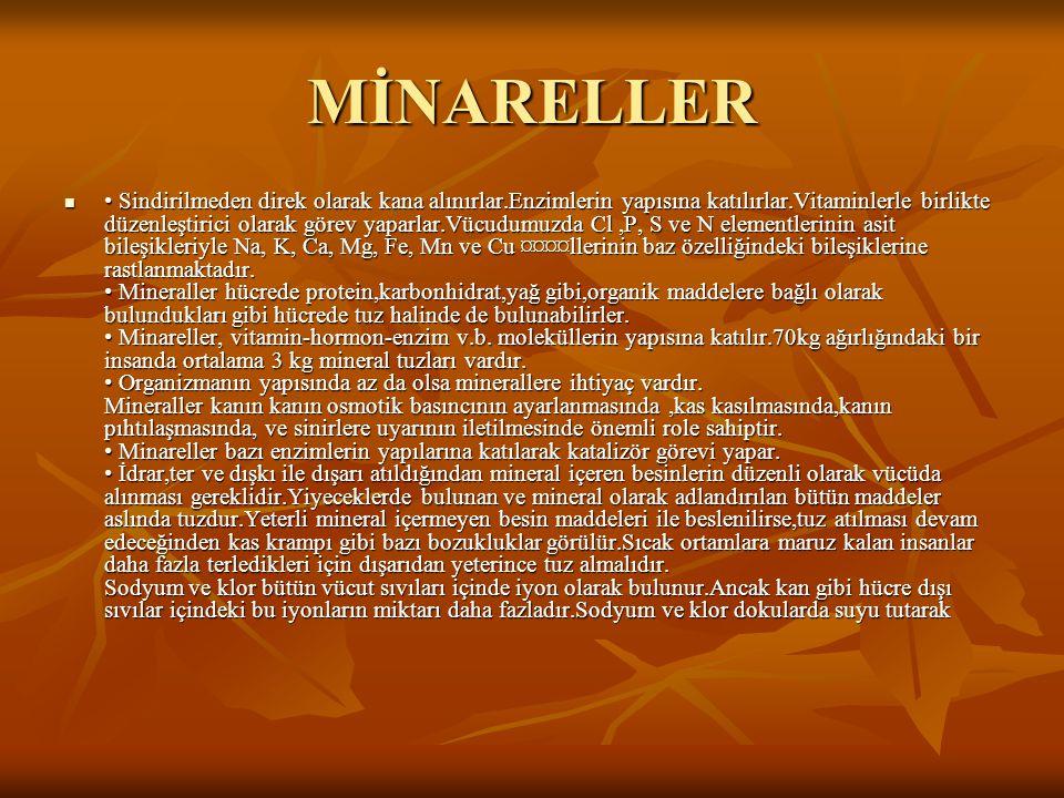 MİNARELLER