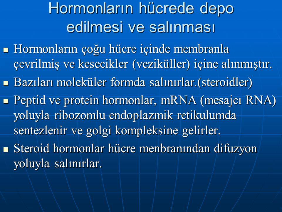 Hormonların hücrede depo edilmesi ve salınması