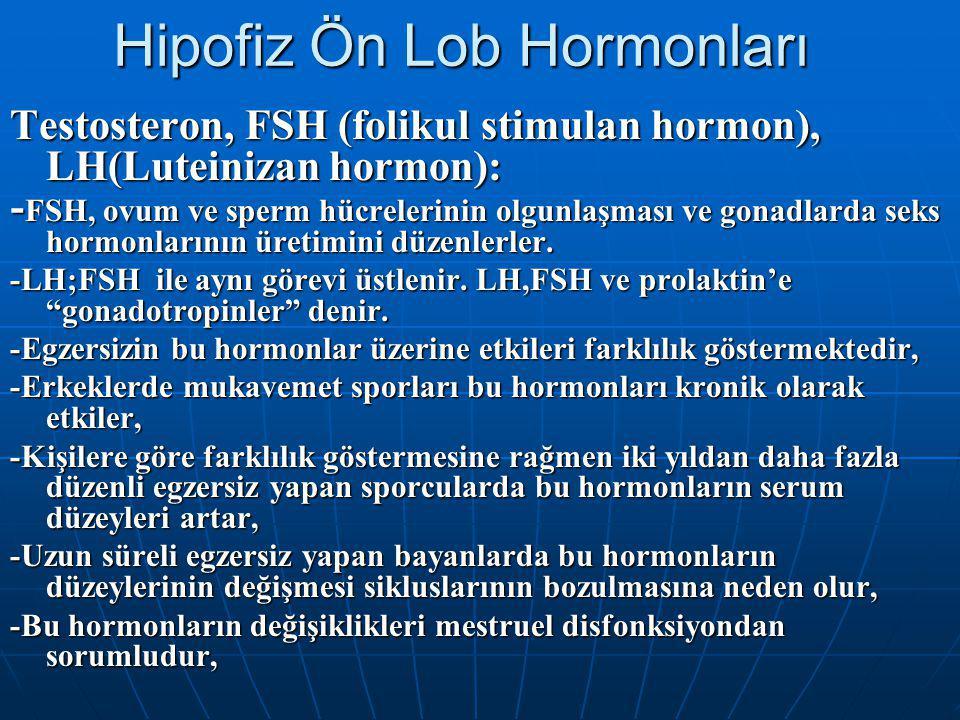 Hipofiz Ön Lob Hormonları