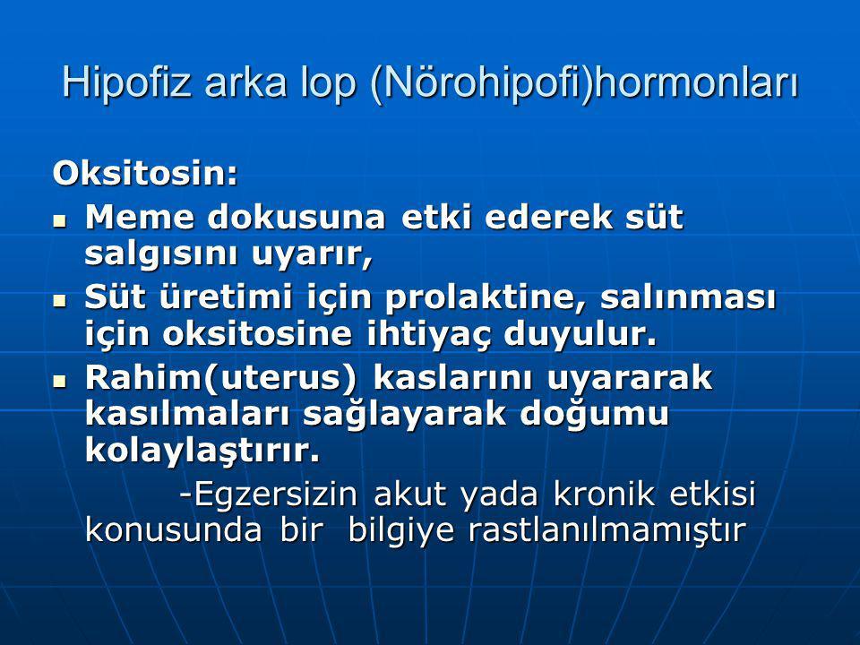 Hipofiz arka lop (Nörohipofi)hormonları