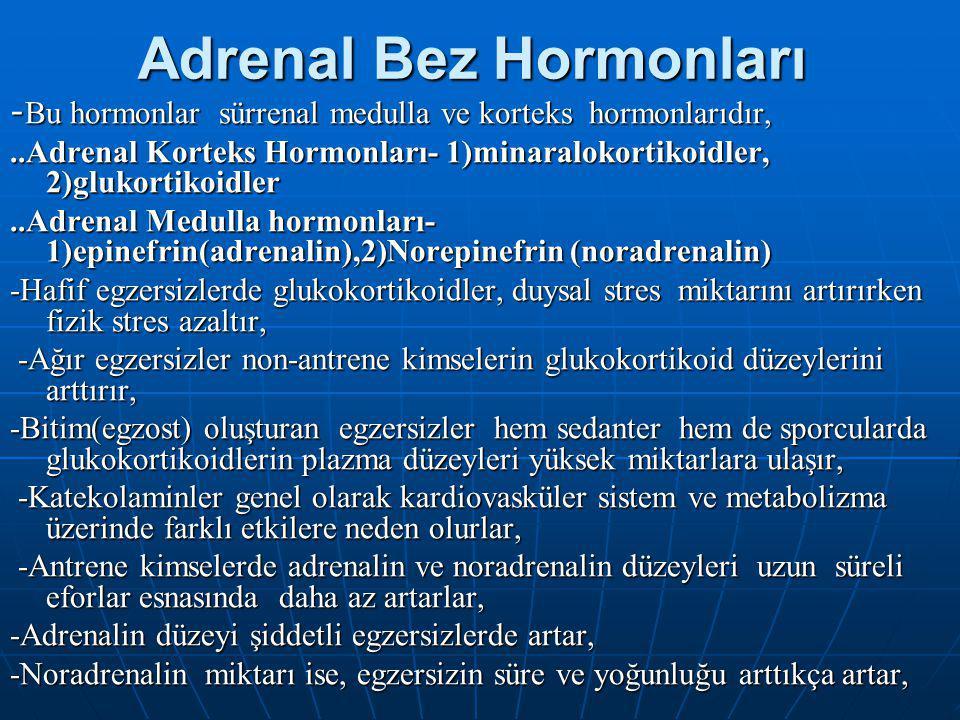 Adrenal Bez Hormonları