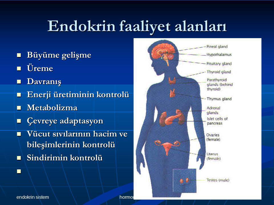 Endokrin faaliyet alanları