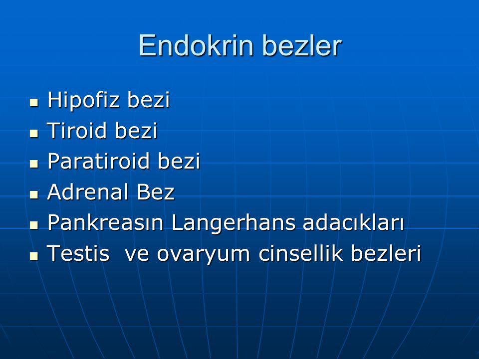 Endokrin bezler Hipofiz bezi Tiroid bezi Paratiroid bezi Adrenal Bez
