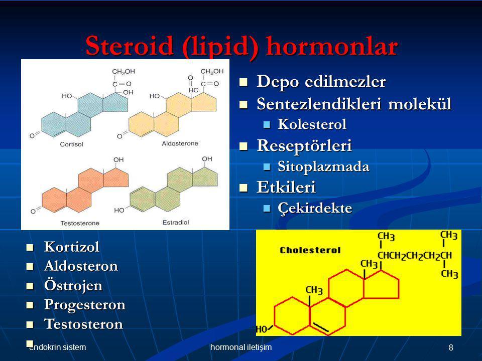 Steroid (lipid) hormonlar