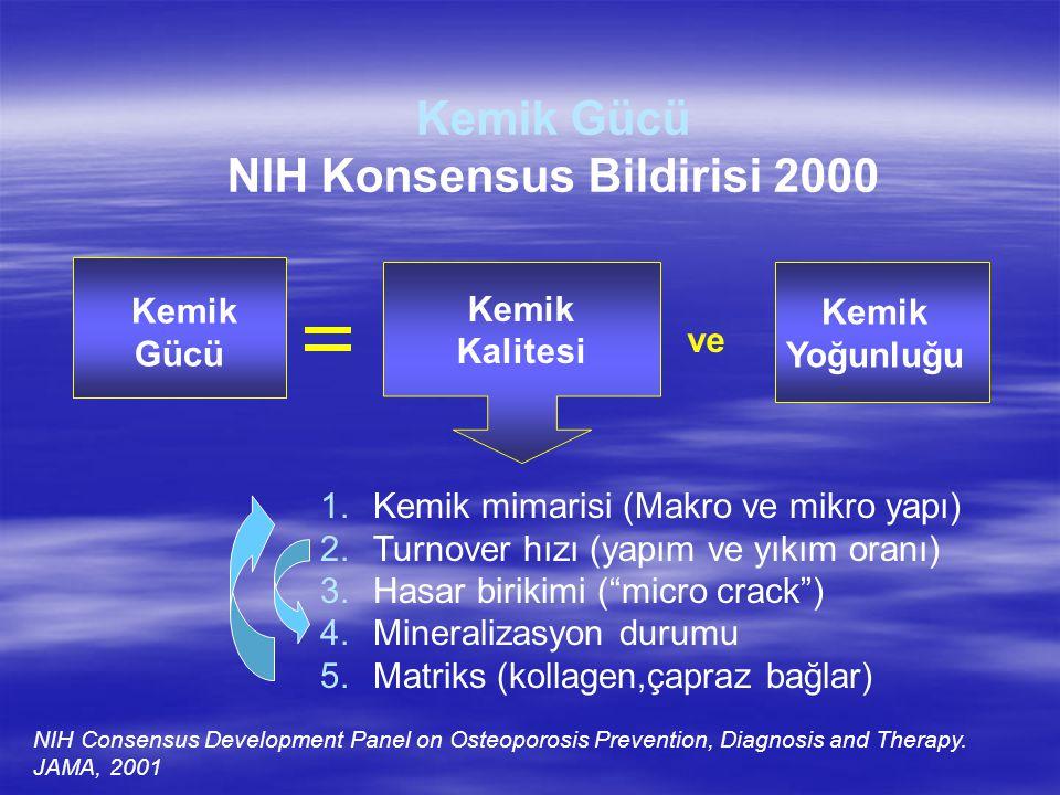 NIH Konsensus Bildirisi 2000
