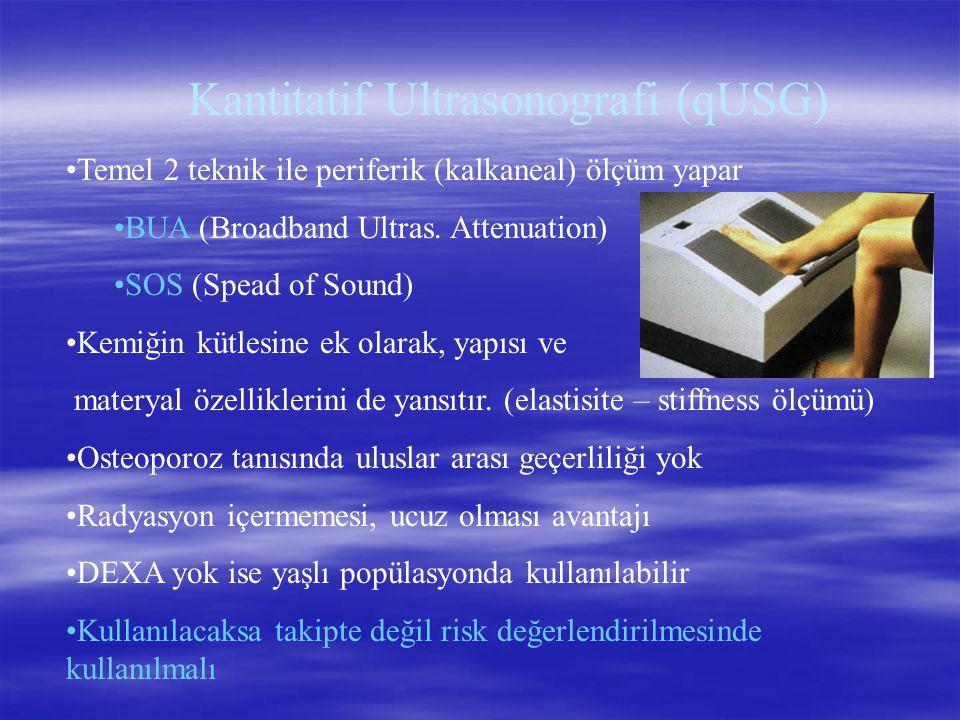 Kantitatif Ultrasonografi (qUSG)