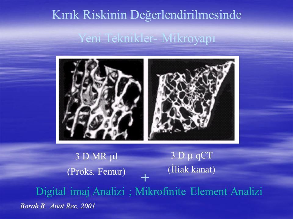 + Kırık Riskinin Değerlendirilmesinde Yeni Teknikler- Mikroyapı
